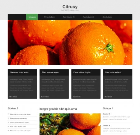Citrusy – Free Resonsive HTML5 Template