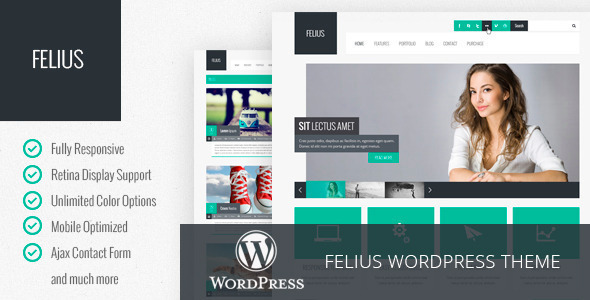 felius-responsive-multipurpose-wordpress-theme
