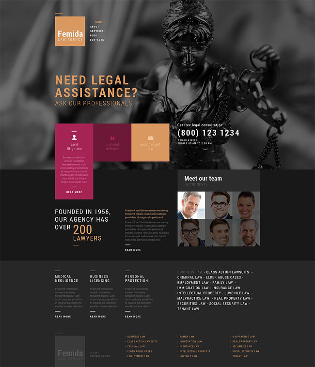 Femida-Public-Justice-Agency-WordPress-Theme