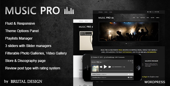 Music Pro-Music Oriented WordPress Theme