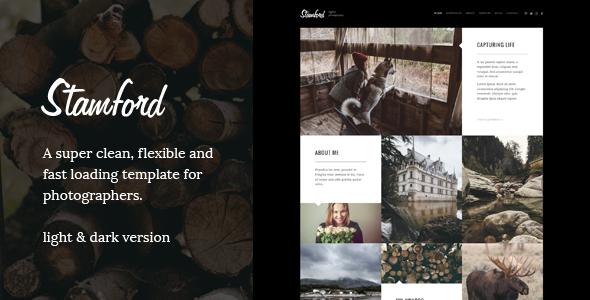 Stamford – Creative Photography WordPress Theme