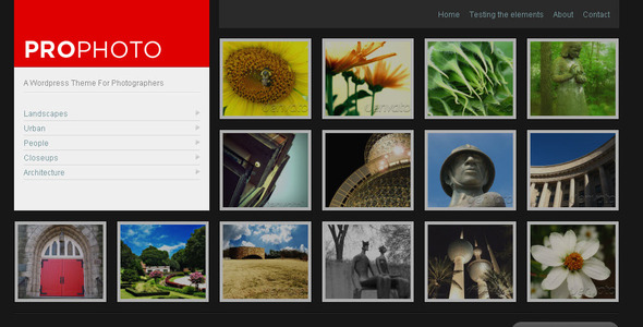 WP ProPhoto-A WordPress Theme For Photographers