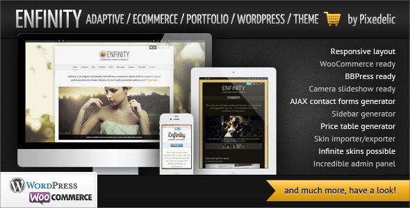 enfinity-adaptive-ecommerce-portfolio-wp-theme
