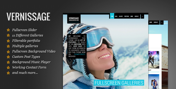 vernissage-responsive-photographyportfolio-theme