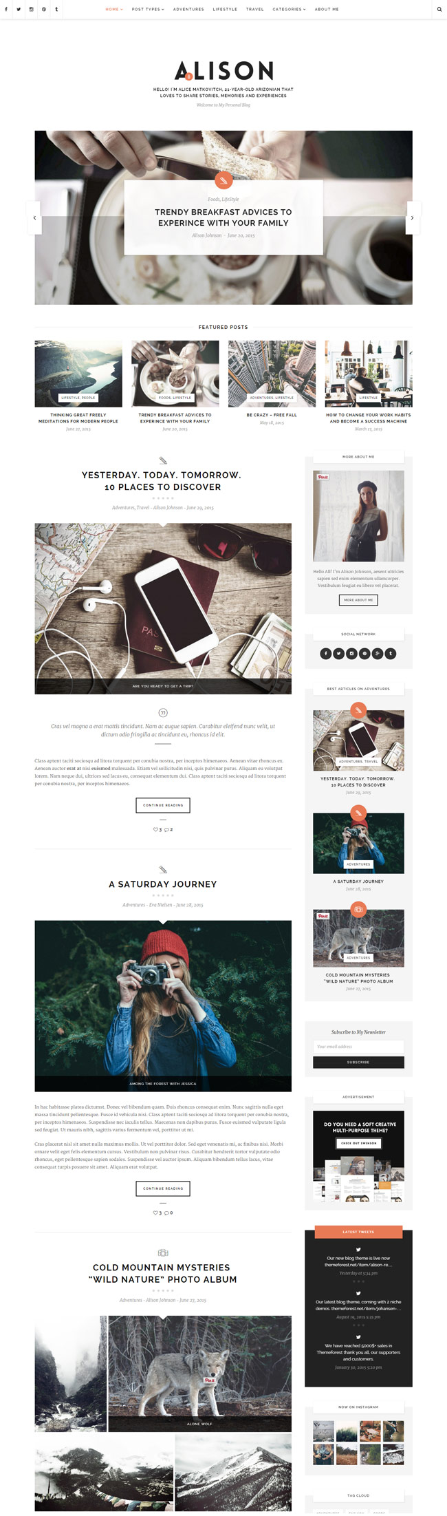 Alison-Responsive-Personal-Blog-Wordpress-Theme