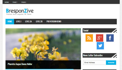 BresponZive-Magazine-WordPress-theme