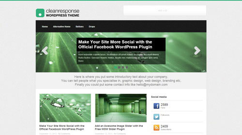 Clean-Response-WordPress-Theme