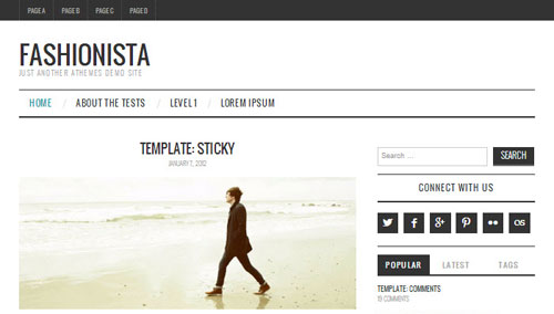 Fashionista-WordPress-theme