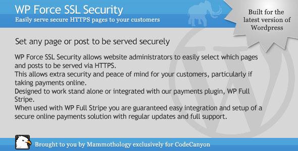 WP Force SSL Security