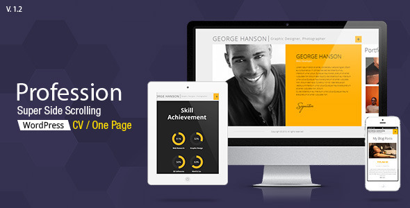 profession-one-page-cv-responsive-theme