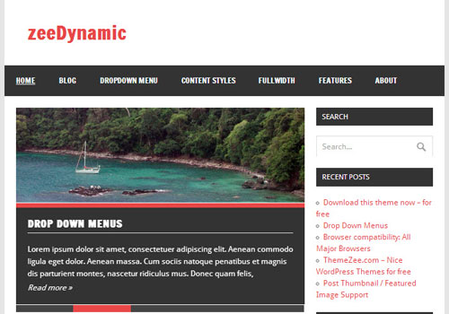 zeeDynamic-Magazine-WordPress-theme