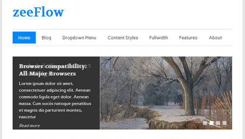 zeeFlow-Magazine-WordPress-theme