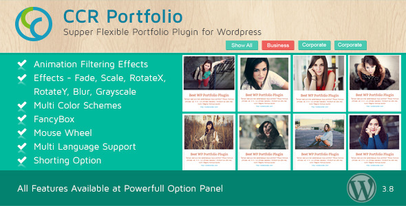 CCR WordPress Portfolio Plugin - Multipurpose Use