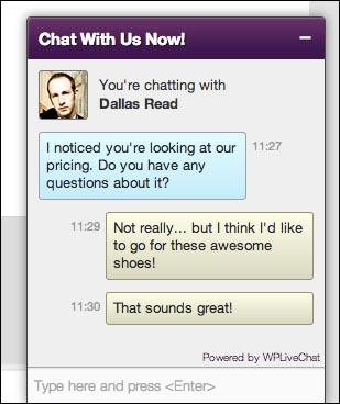 Lively Chat Support WordPress Plugin