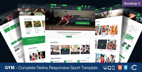 15+ Best Responsive Sports Website Templates - DesignMaz