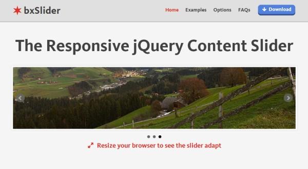 bxSlider Responsive jQuery Slider