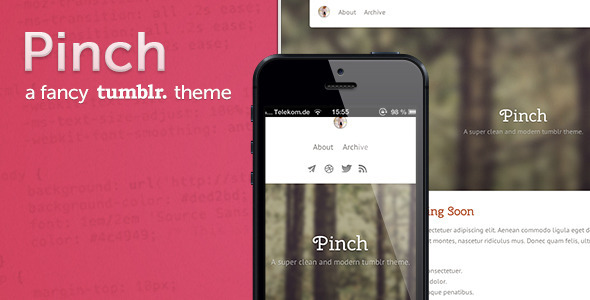 pinch-a-fancy-tumblr-theme