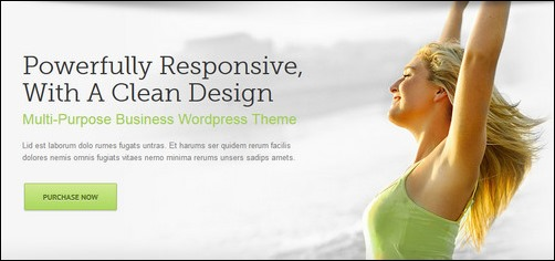 Avada Multiple Header Designs