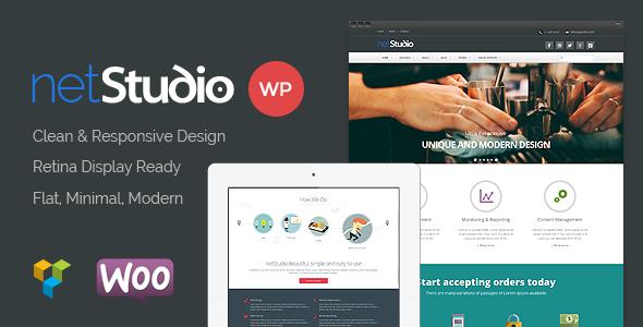 netstudio-premium-multipurpose-responsive-theme