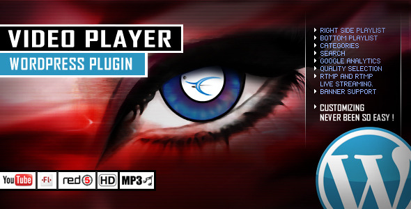 video-player-wordpress-plugin-youtube
