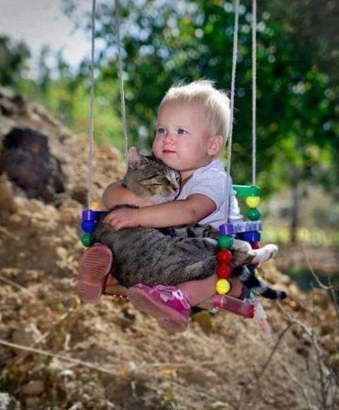 Babies and Pets 20