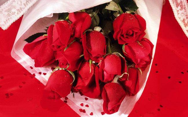 romantic-roses-wallpaper