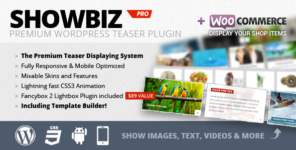 Showbiz Pro Responsive Teaser WordPress Plugin