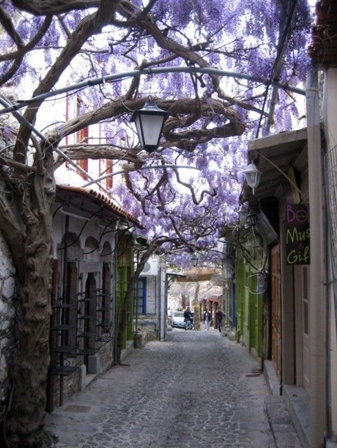 the most fascinating street corners in the world