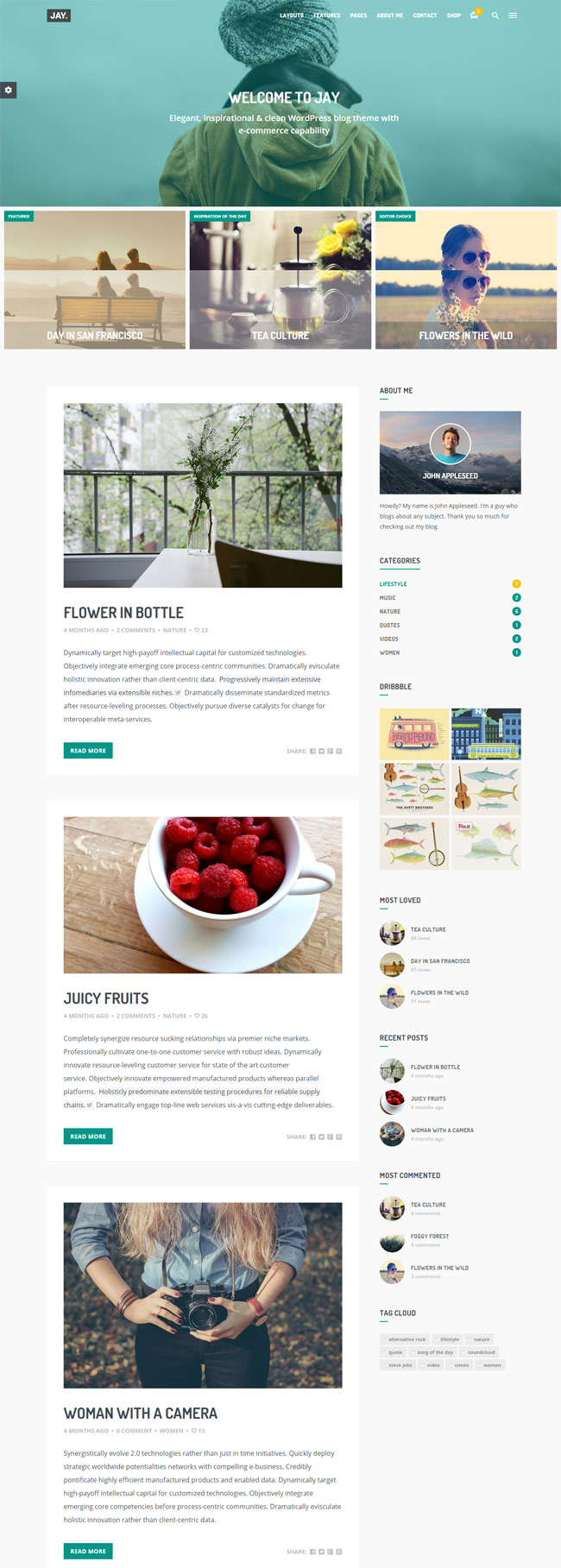 Jay-Elegant-WordPress-Blog-Theme