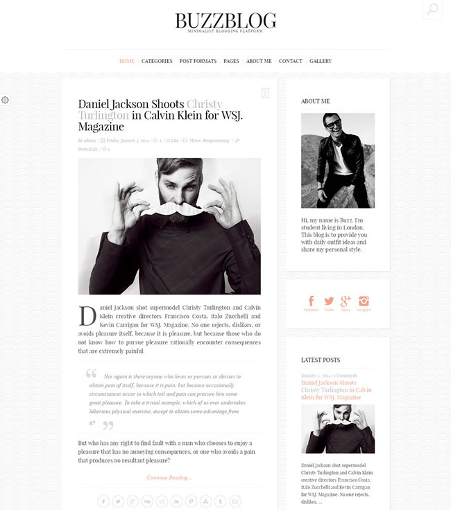buzzblog-clean-personal-wordpress-blog-theme