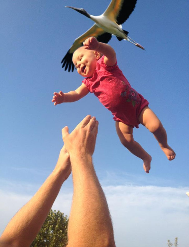 Funny Photos Taken at the Right Moment