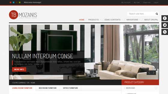 responsive-drupal-commerce-themes