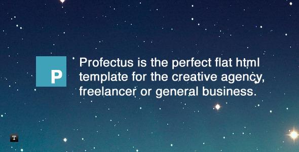 Profectus - Responsive Flat HTML Template