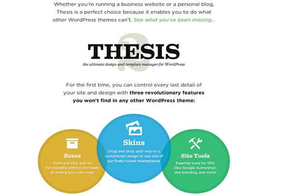 Best thesis skins for business