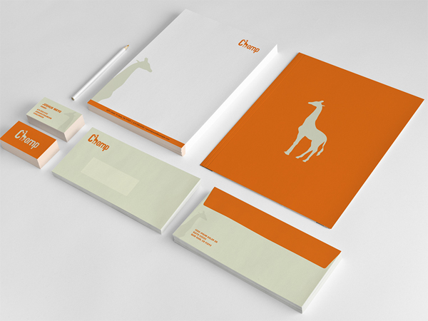 65 Best Branding And Identity Designs For Inspiration