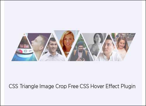 Free CSS Triangle Image Crop Hover Effect Plugin