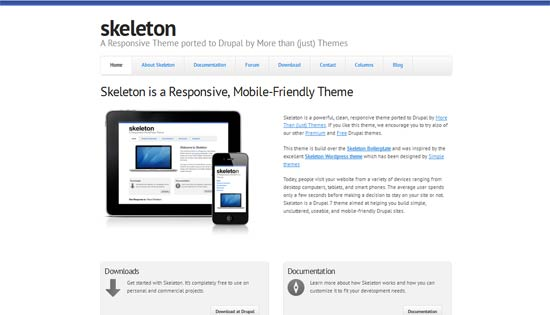 drupal skeleton theme