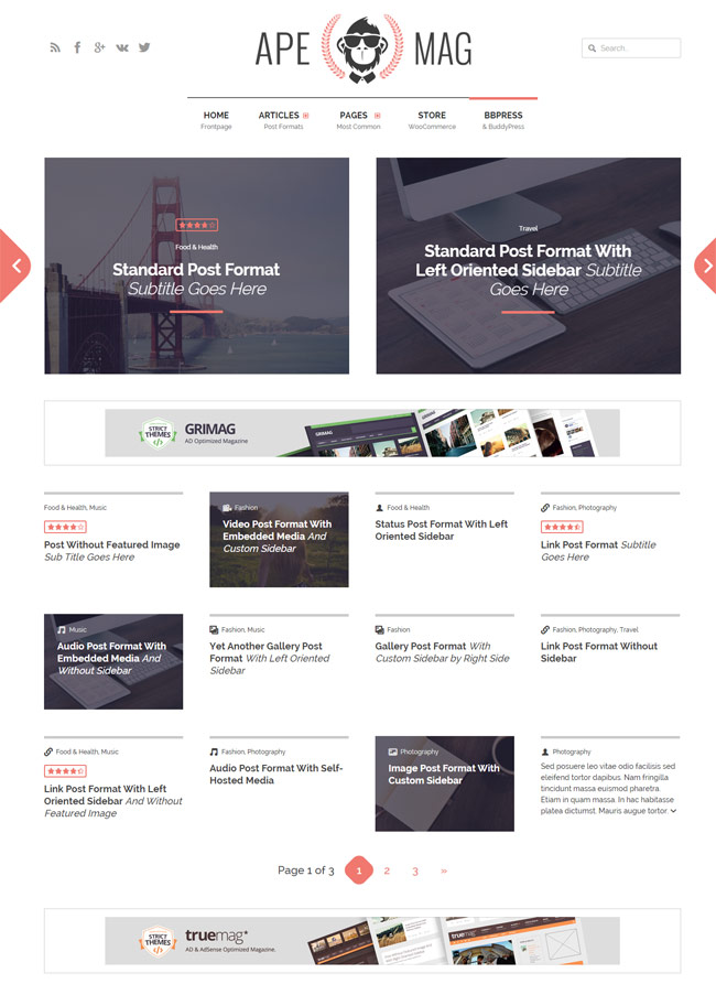 Apemag-Ad-Adsense-ready-Wordpress-Magazine-Theme