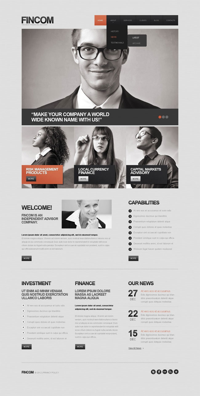 Gray-Financial-Advisor-WordPress-Theme