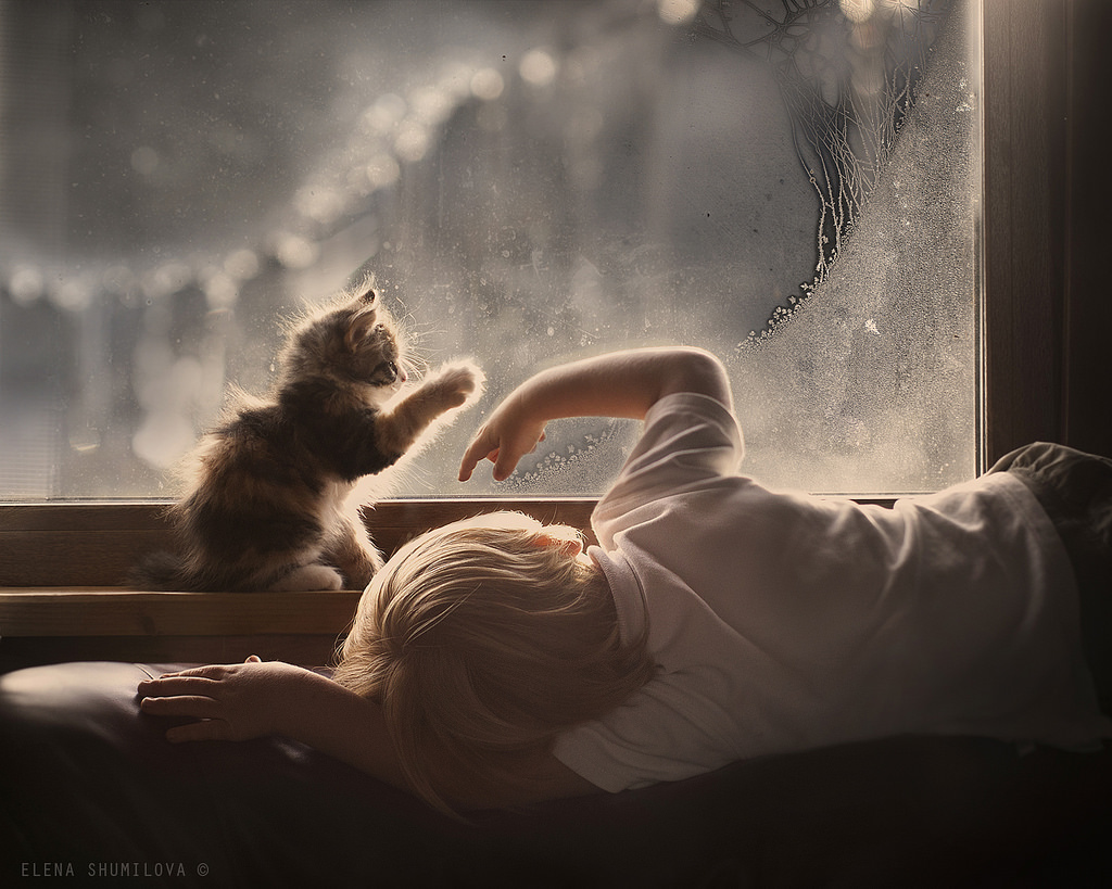 new-photo-series-of-kids-with-their-pets-from-elena-shumilova-13