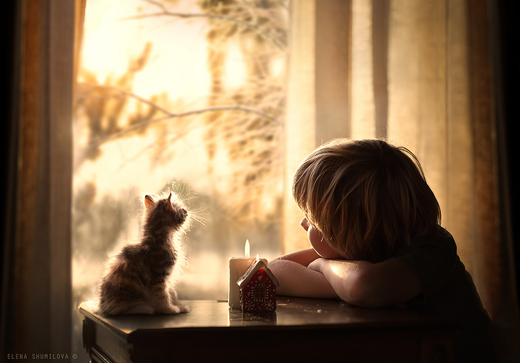 new-photo-series-of-kids-with-their-pets-from-elena-shumilova-2