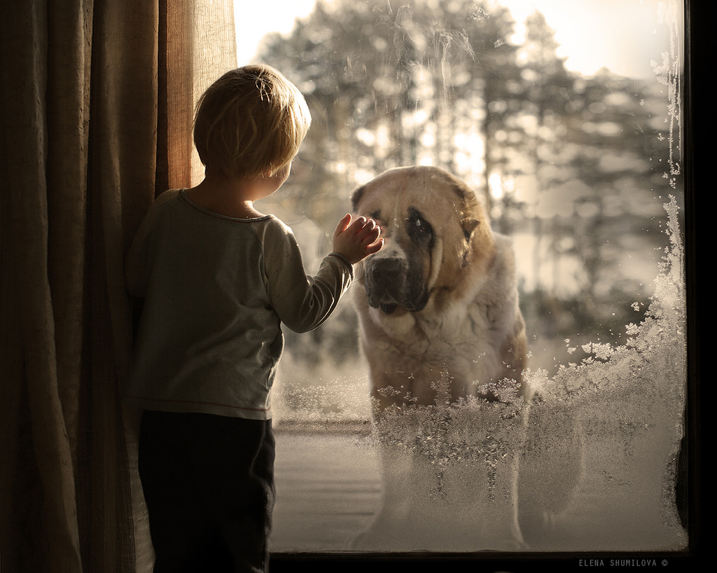 new-photo-series-of-kids-with-their-pets-from-elena-shumilova