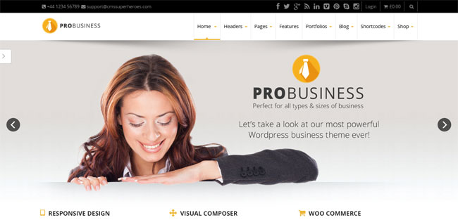 pro-business-responsive-multipurpose-theme