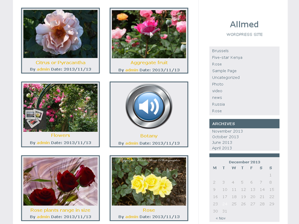 Allmed - Free Video WordPress Themes