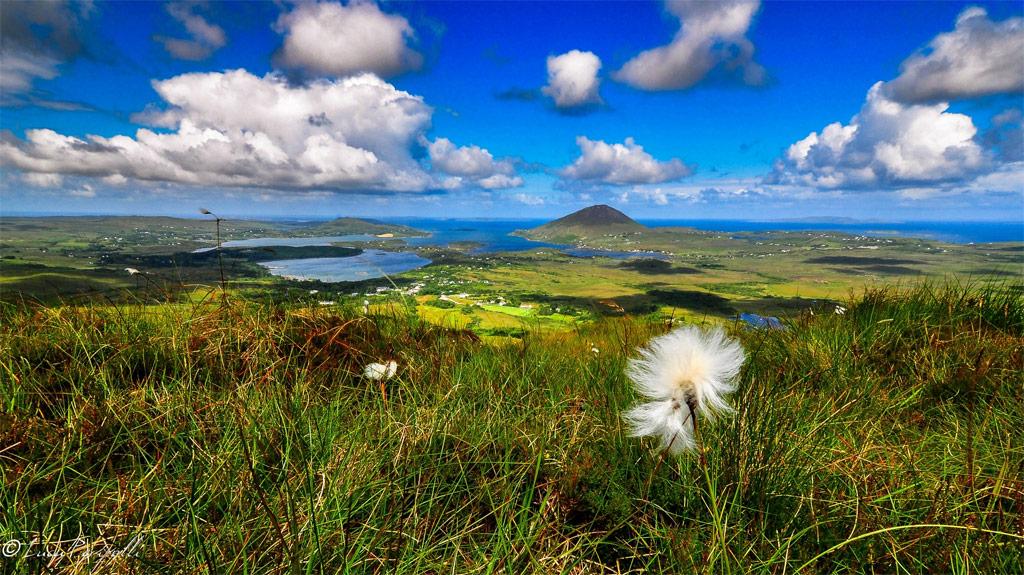 Connemara-National-Park