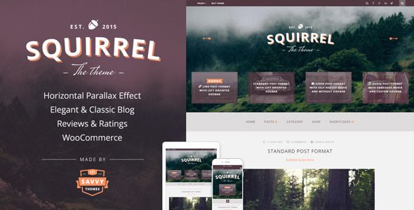 Squirrel - A Responsive WordPress Blog Theme