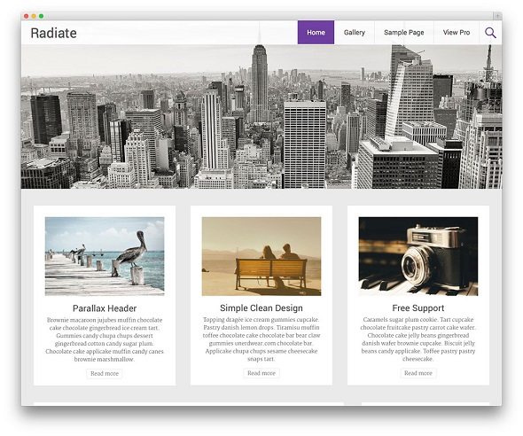 Radiate Blogging WordPress Theme Free