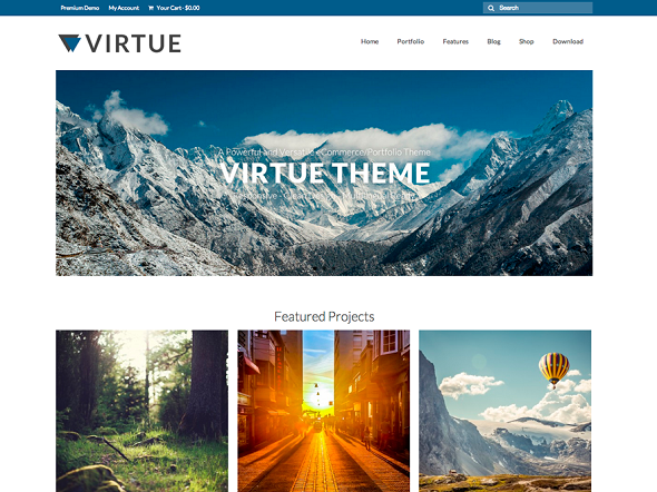 Virtue Extremely WordPress Theme Free