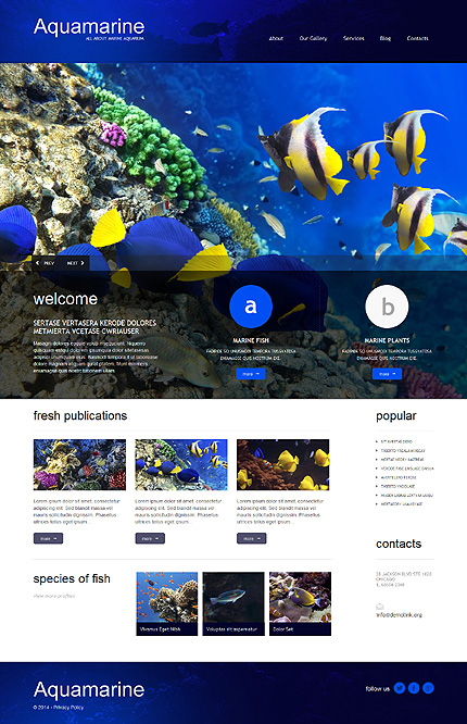 Aqua Gallery WordPress Theme