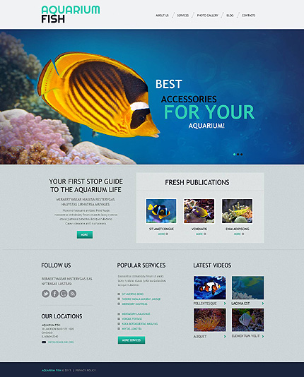 Tropical Fish and Auqarium Design Blog